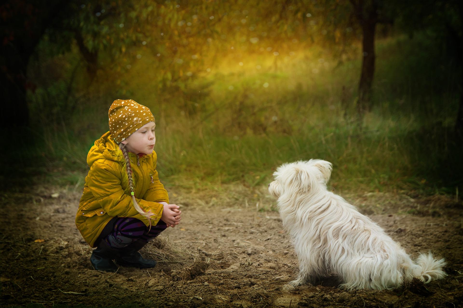 friendship-2939535_1920