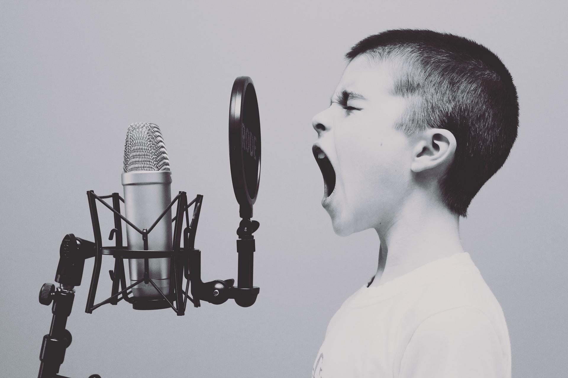 microphone-1209816_1920-1